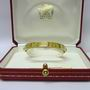 Cartier Love Screw18ct Yellow gold Bangle 17